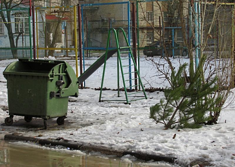 натуральная ёлка выброшена на мусорку