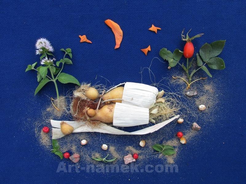 Фото картины из растений и овощей — картофеля, кукурузы.