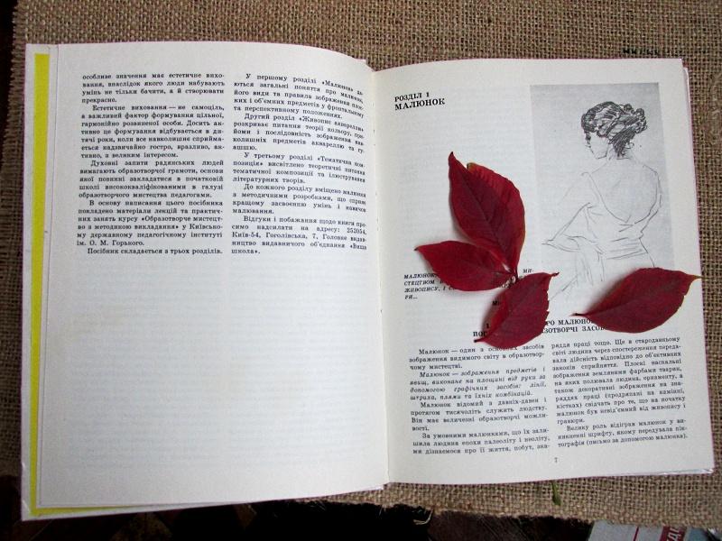 Листья красного цвета в раскрытой книжке
