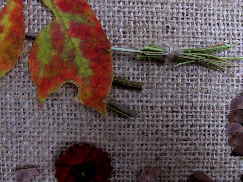 Фрагмент фото-картинки «Баба Яга» из природного материала.