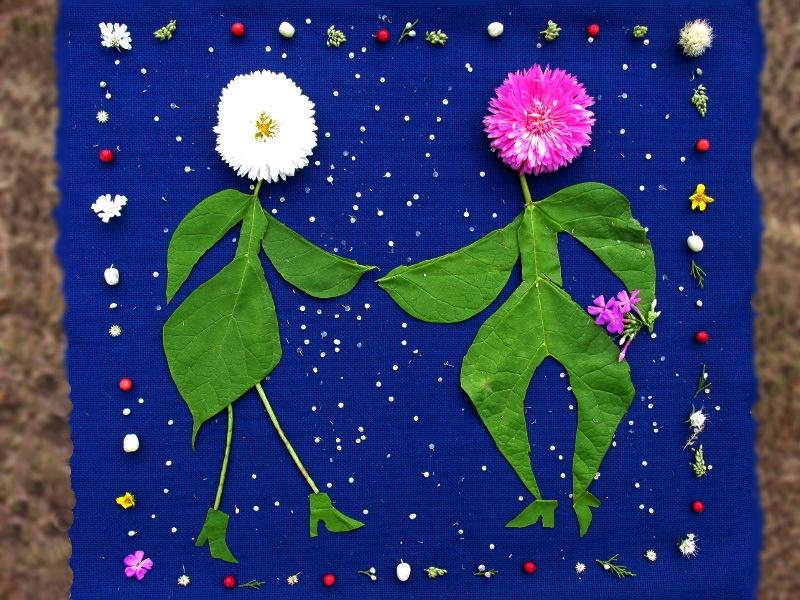 Фото — картинка из природного материала на синей канве - парочка.