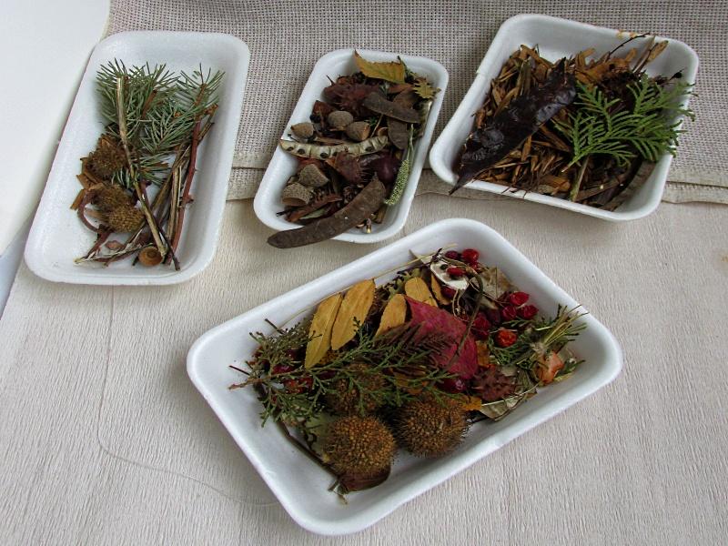 Растения для поделок в пластмассовых контейнерах.