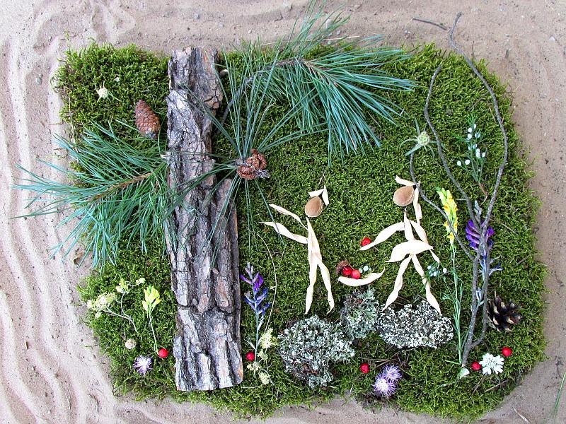 Фото-картинка из лесных растений — парочка собирает ягоды.